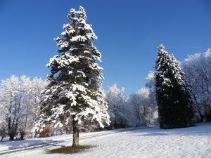 Envie de glisse? Profitez d'un séjour neige aux Gîtes d'Étape!